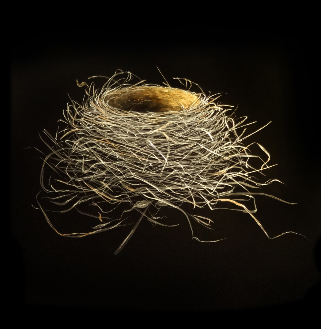 Mitchell Lonas 2015 Nest on Metal