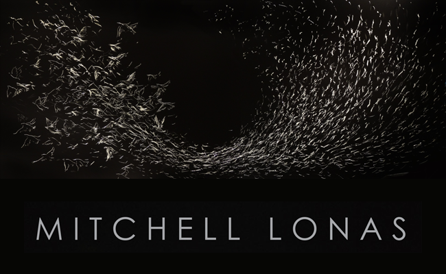 event_art_opening_mitchell_lonas_2016