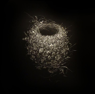 Mitchell Lonas 2015 Humming Bird Nest