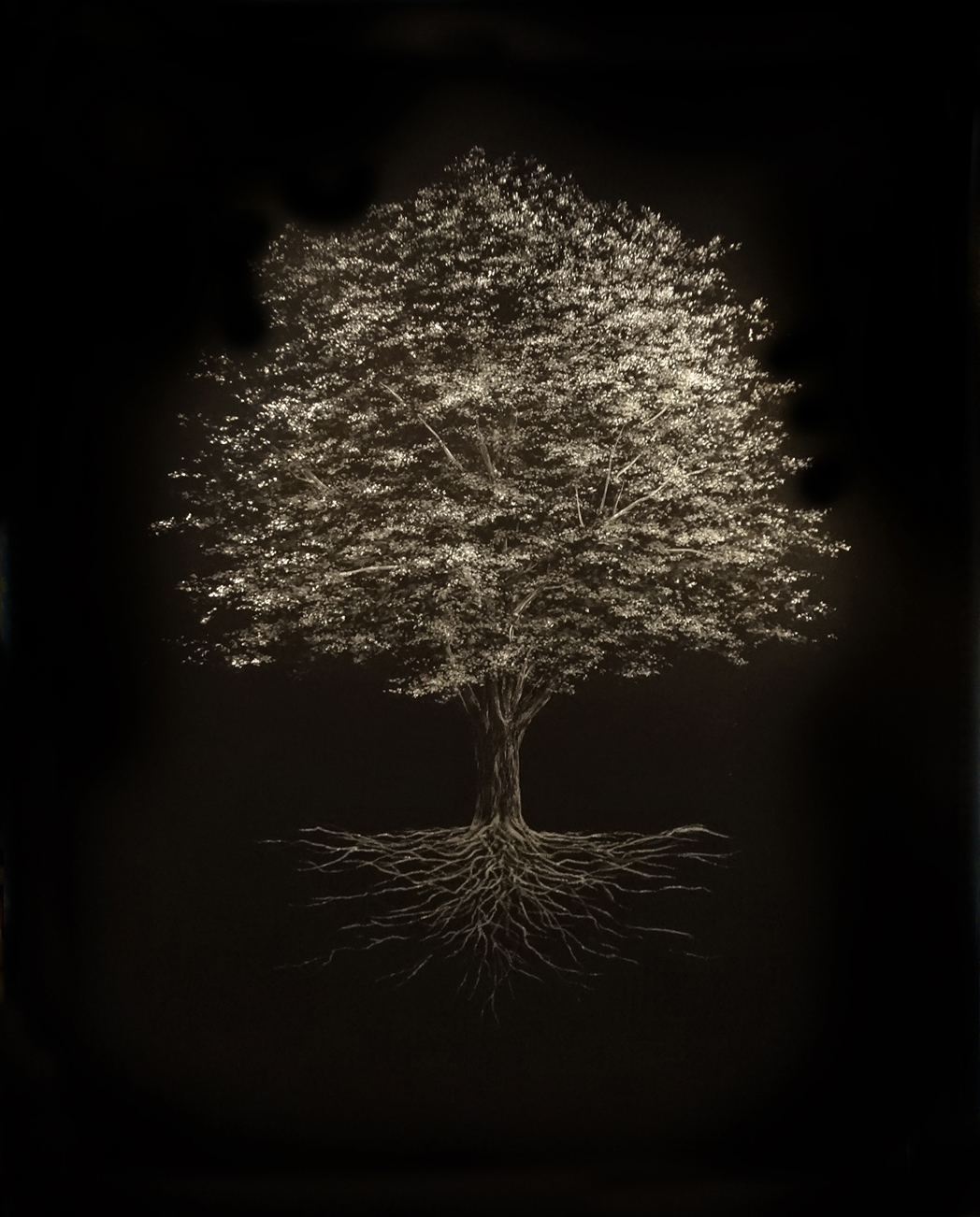 Mitchell Lonas - Tree on Metal